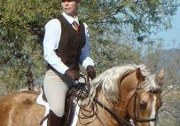 Working Equitation Phase Clinic Series