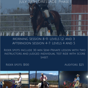 Arizona Working Equitation Clinic Series