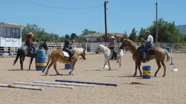 Working Equitation Play Day
